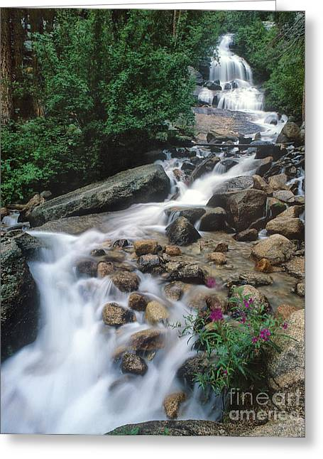 Flowing Wells Greeting Cards - Stream Cataract Whitney Portal Trailhead Alabama Hills Greeting Card by Dave Welling