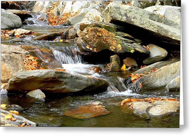 Gatlinburg Tennessee Greeting Cards - Stream Flowing Through Rocks Greeting Card by Mary Goodreau