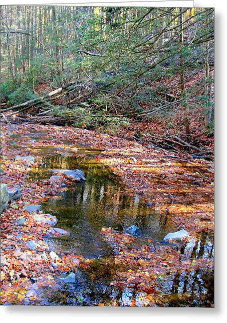 Stein Greeting Cards - Stream in autumn with leaves Greeting Card by Valerie Stein