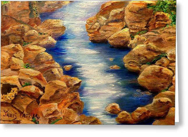 Fishing Creek Greeting Cards - Stream in Colorado Mountains close to Ouray Greeting Card by Janis  Tafoya