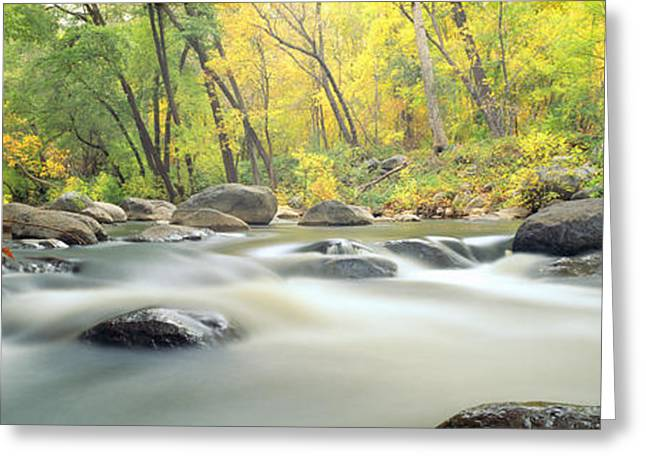 Colors Of Autumn Greeting Cards - Stream In Cottonwood Canyon, Sedona Greeting Card by Panoramic Images