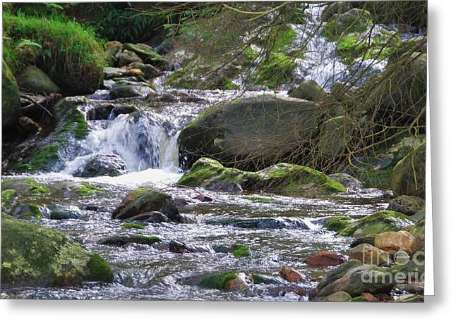 Overhang Greeting Cards - Stream In Wicklow 4 Greeting Card by Marcus Dagan