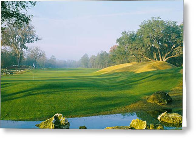 Gainesville Greeting Cards - Stream On A Golf Course, Haile Greeting Card by Panoramic Images