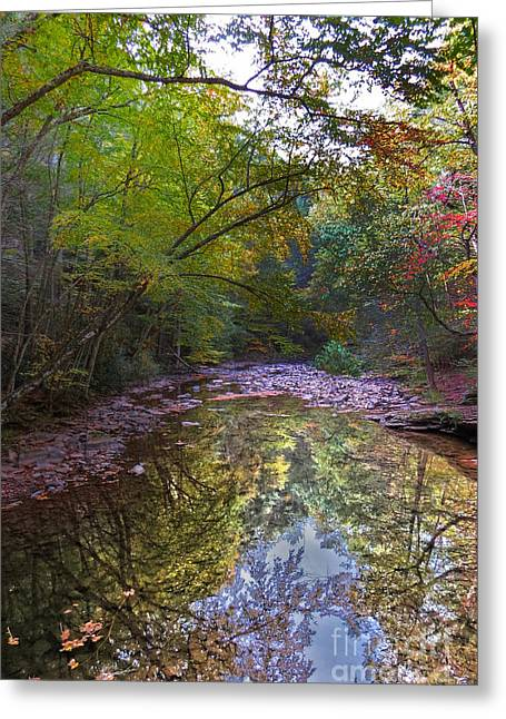 Trough Creek Reflection Greeting Card by Dawn Gari