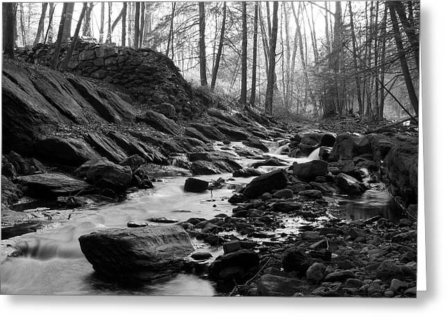 Chiara Greeting Cards - Stream Through Woods Greeting Card by Rocco Chiara