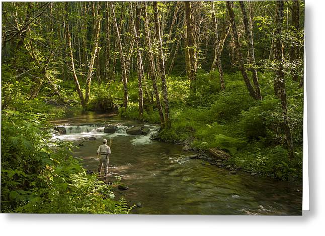 Water Flowing Greeting Cards - Stream Trout Fishing Greeting Card by Jean Noren