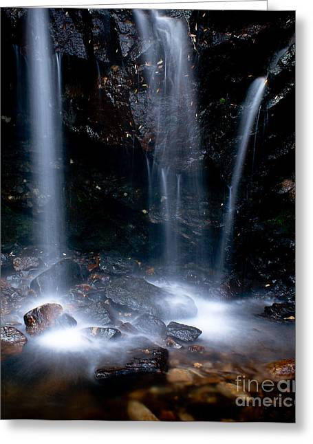 Peaceful Scenery Greeting Cards - Streams of Light Greeting Card by Steven Reed