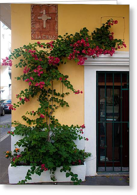 Caribbean Corner Greeting Cards - Street corner in Old San Juan Greeting Card by Frank Tozier