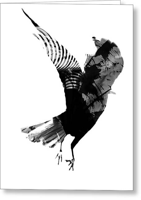 Jerry Cordeiro Greeting Cards - Street Crow Greeting Card by Jerry Cordeiro