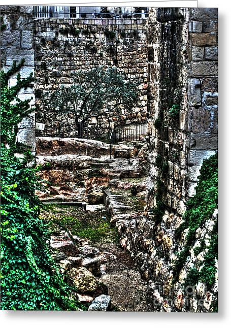 Old Western Photos Mixed Media Greeting Cards - Street In Jerusalem Greeting Card by Michael Braham