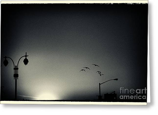 Filmnoir Greeting Cards - Street Lights Battery Park New York City Greeting Card by Sabine Jacobs
