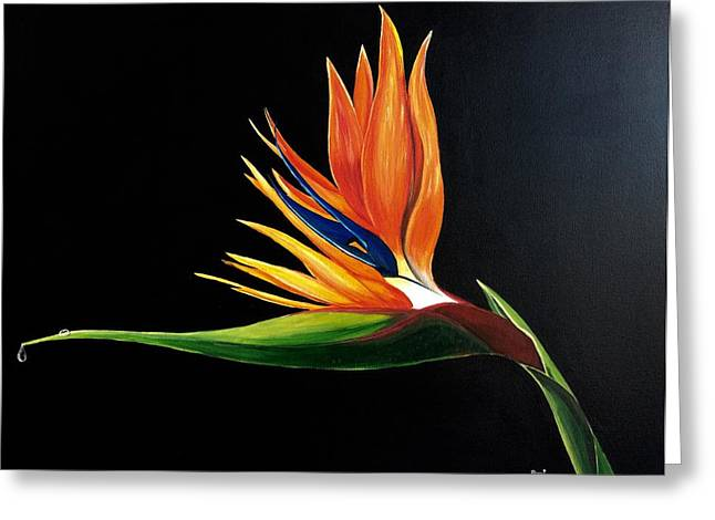 Strelitzia Paintings Greeting Cards - Strelitzia - Bird of Paradise . Greeting Card by Aarti Bartake
