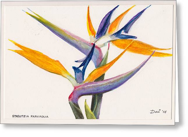 Strelitzia Paintings Greeting Cards - Strelitzia Flowers Greeting Card by Dai Wynn