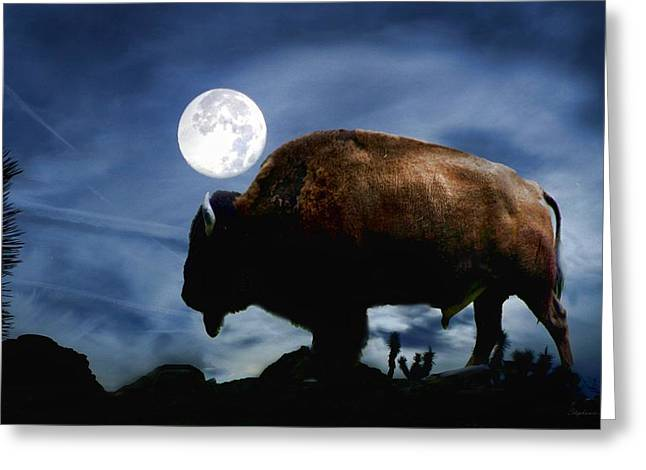 Buffalo Greeting Cards - Strength Greeting Card by Stephanie Laird