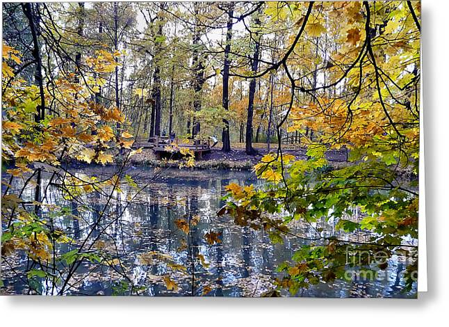 Pond In Park Greeting Cards - Stretching in Moscow Greeting Card by Simeon Taylor