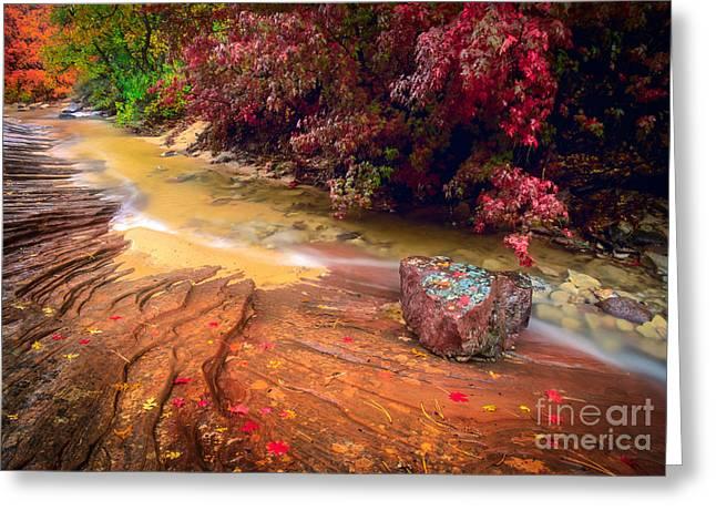 Striated Creek Greeting Card by Inge Johnsson