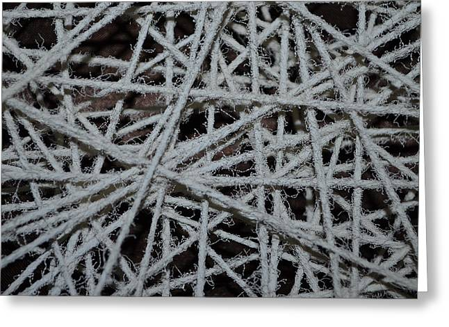 String Sculptures Greeting Cards - String Close-up Greeting Card by Daniel P Cronin