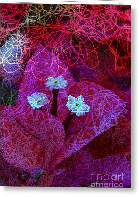 Fuchsia Dress Greeting Cards - Strings Attached Greeting Card by Anna Wacker