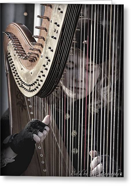 Franklin Tennessee Greeting Cards - Strings of the Harp Greeting Card by Pic