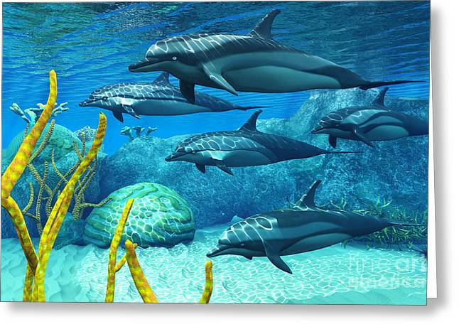 Sea Creature Pictures Greeting Cards - Striped Dolphins Greeting Card by Corey Ford