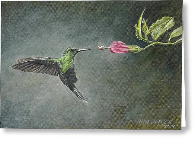 Stripes Greeting Cards - Striped Tailed Hummingbird Greeting Card by Rob Dreyer AFC