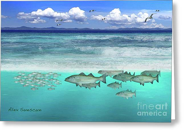 Stripers In The Surf Greeting Card by Alex Suescun