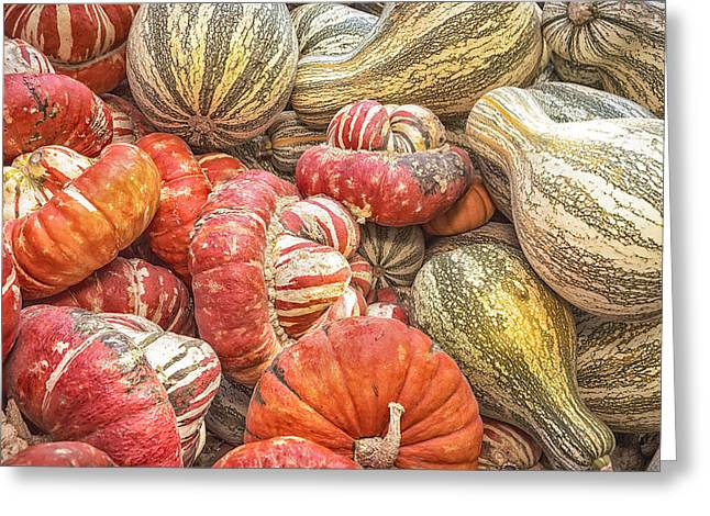 Farmstand Photographs Greeting Cards - Stripes Greeting Card by Caitlyn  Grasso