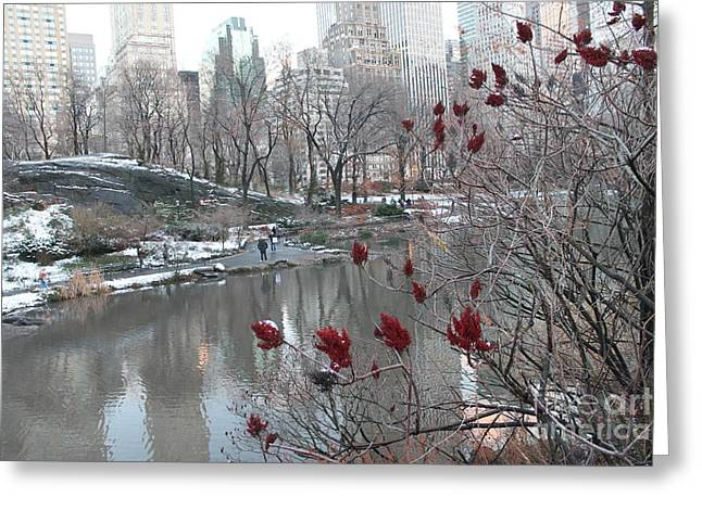 Winter Park Pyrography Greeting Cards - Stroll Thru Central Park Greeting Card by Paige  Acheson