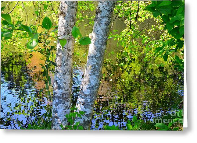 Dappled Light Greeting Cards - Strolling with Renoir Greeting Card by Lauren Leigh Hunter Fine Art Photography