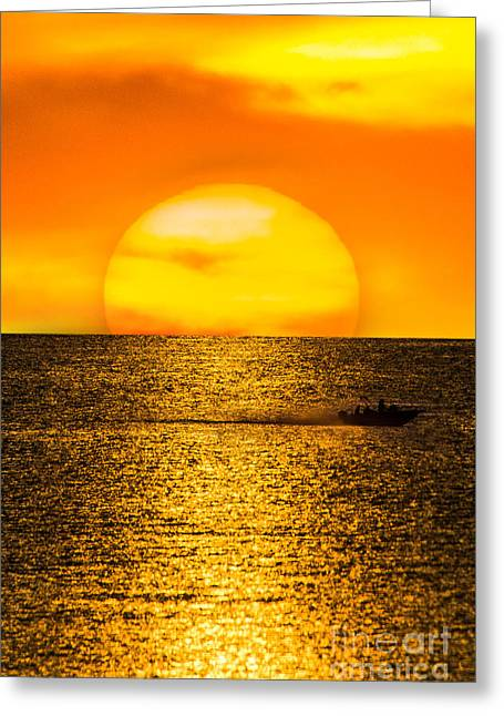 Strong Will Greeting Cards - Strong Sun Greeting Card by Will  Gottwald