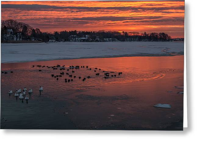 Winter In Maine Greeting Cards - Stroudwater Crossing Sunrise Greeting Card by Stroudwater Falls Photography
