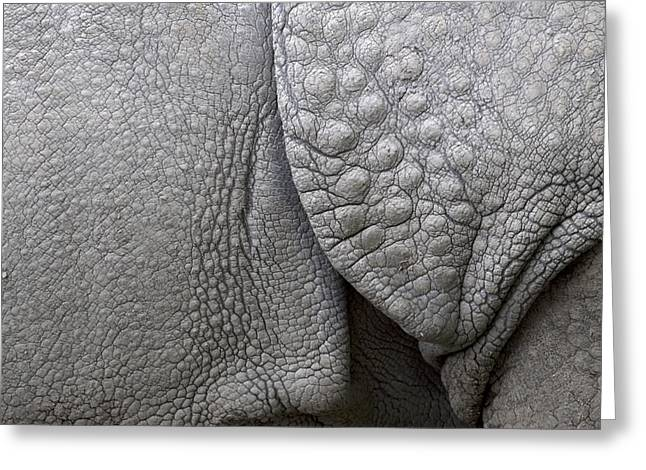One Horned Rhino Greeting Cards - Structure of the skin of an Indian rhinoceros in a zoo in the Netherlands Greeting Card by Ronald Jansen