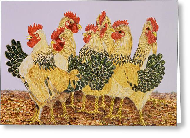 Cockerels Greeting Cards - Strutters Ballet Greeting Card by Pat Scott