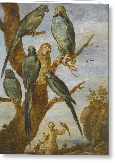 Flemish School; (17th Century) Greeting Cards - Studies Of Birds Greeting Card by Flemish School
