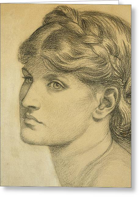 Adults Drawings Greeting Cards - Study of a Head for The Bower Meadow Greeting Card by Dante Charles Gabriel Rossetti