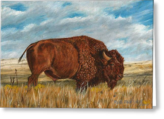 Buffalo Greeting Cards - Study of an American Bison Greeting Card by Rob Dreyer AFC