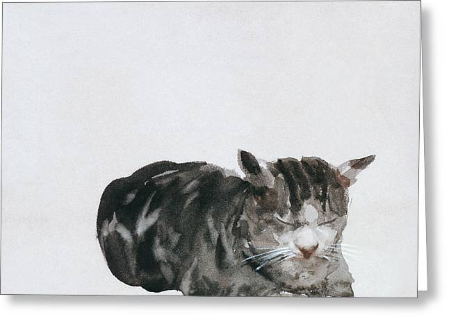 Watercolor Cat Print Greeting Cards - Study of Cat Greeting Card by Giuseppe De Nittis