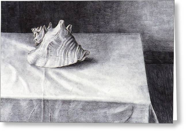 Table Cloth Drawings Greeting Cards - Study of Shell 4 Greeting Card by Julianna Wells