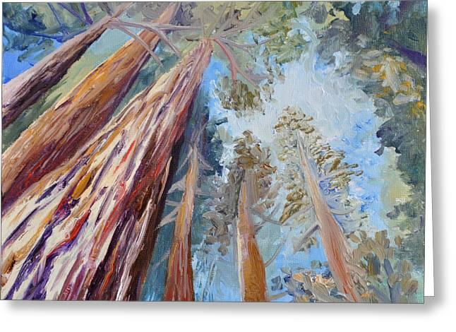 Santa Cruz Paintings Greeting Cards - Study of Walk Under Redwoods Greeting Card by Cedar Lee
