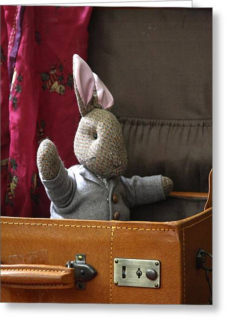 Tweed Suit Greeting Cards - Stuffed Bunny in a Suitcase Greeting Card by Lynn-Marie Gildersleeve