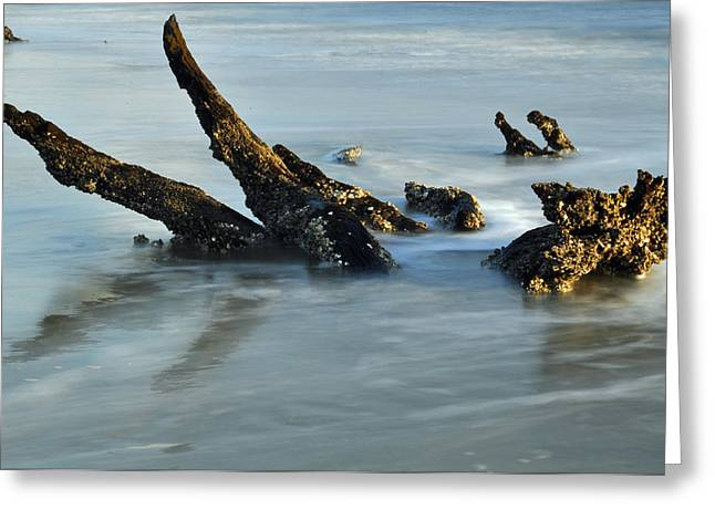 Beach Photographs Greeting Cards - Stumps in the Ocean 1.1 Greeting Card by Bruce Gourley