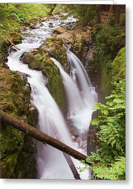Stunning Sol Duc Greeting Card by Heidi Smith
