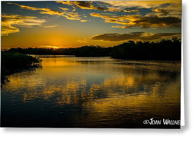 Englewood Greeting Cards - Stunning Sunrise Greeting Card by Joan Wallner
