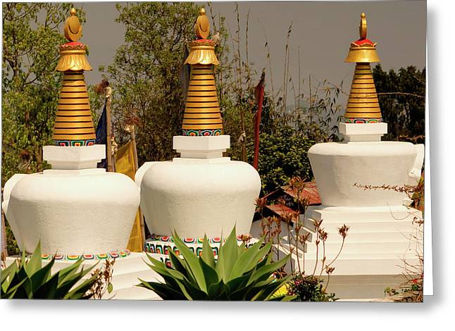 Stupas In A Buddhist Monastery Greeting Card by Jaina Mishra