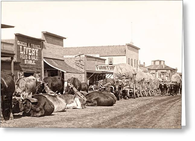 False Front Greeting Cards - STURGIS SOUTH DAKOTA c. 1890 Greeting Card by Daniel Hagerman