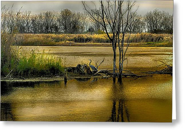 Sublime Banner Part 3 Greeting Card by Kimberleigh Ladd