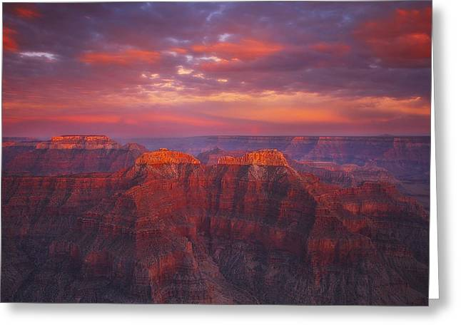 Labor Day Greeting Cards - Sublime Fire Greeting Card by Peter Coskun