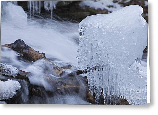 Cathedral Rock Greeting Cards - Submerged Logs With Clump Of Icicles Greeting Card by John Stephens
