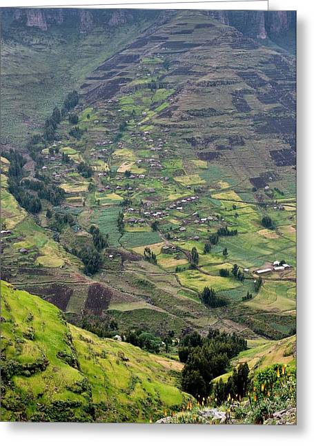 Subsistence Farming In Simien Mountains Greeting Card by Tony Camacho