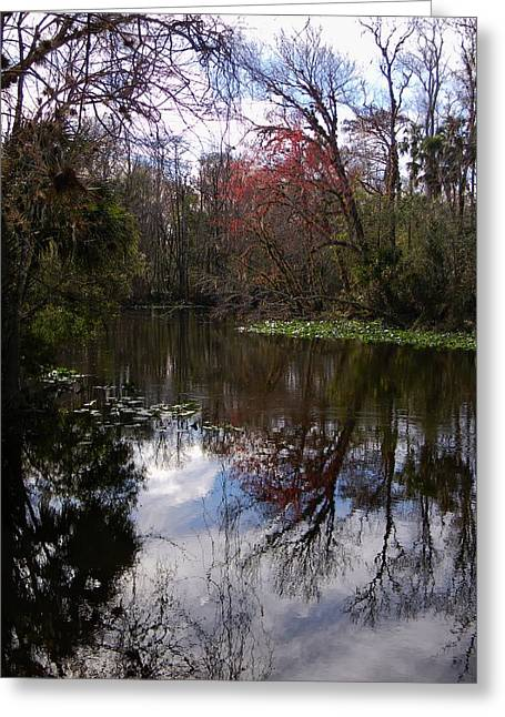 Subtle Colors Greeting Cards - Subtle Winter Colors 2 Greeting Card by Warren Thompson